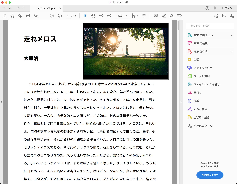 Foxit PDF Editor Acrobat Readerで表示